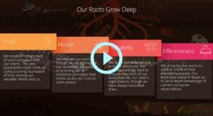 Blog-Presentation-Powerpoint-Video